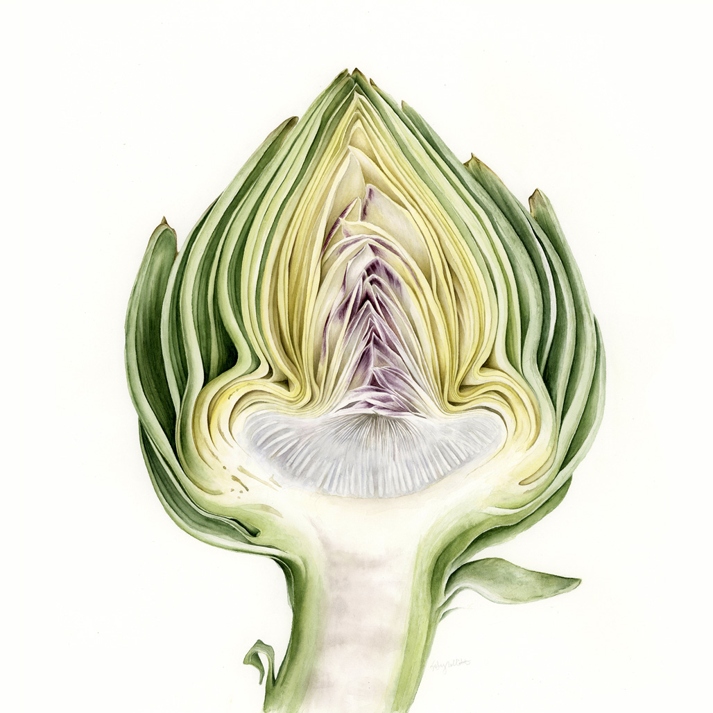 Consider the Artichoke