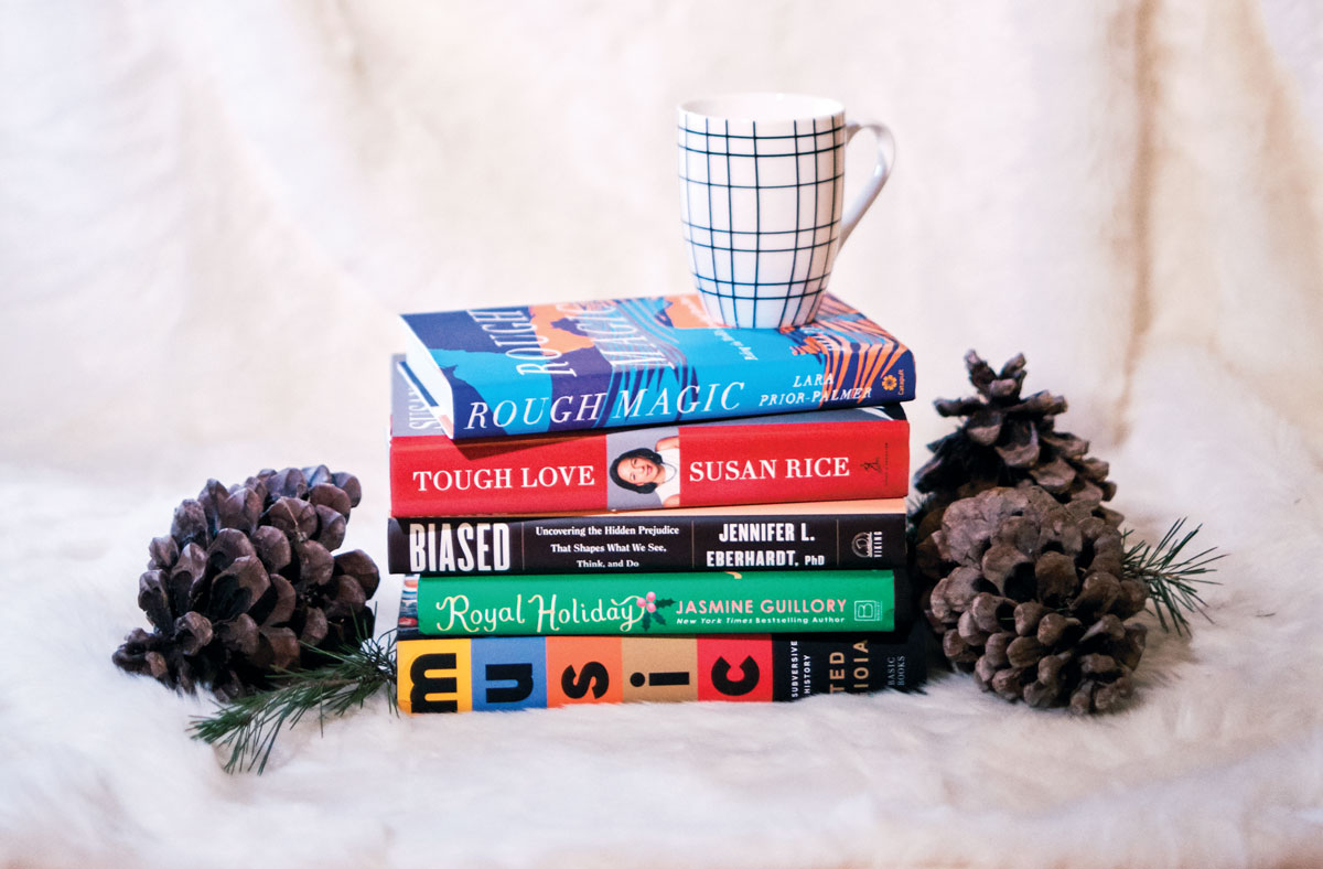 Stack of books sitting on a fluffy white blanket, flanked by pinecones