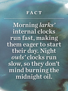 Fact: Morning larks' internal clocks run fast, making them eager to start their day. Night owls' clocks run slow, so they don't mind burning the midnight oil.