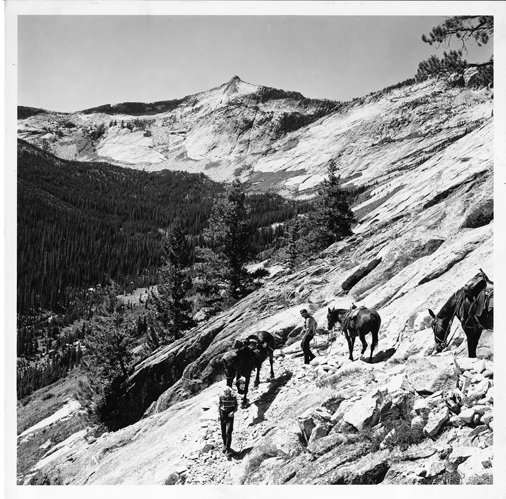 Photo of Blodgett Canyon, Mont. packing, May 1962.