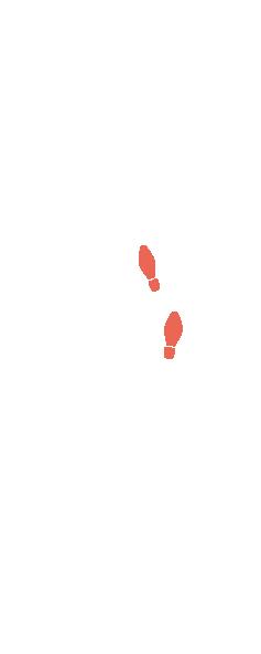 Feet illustration