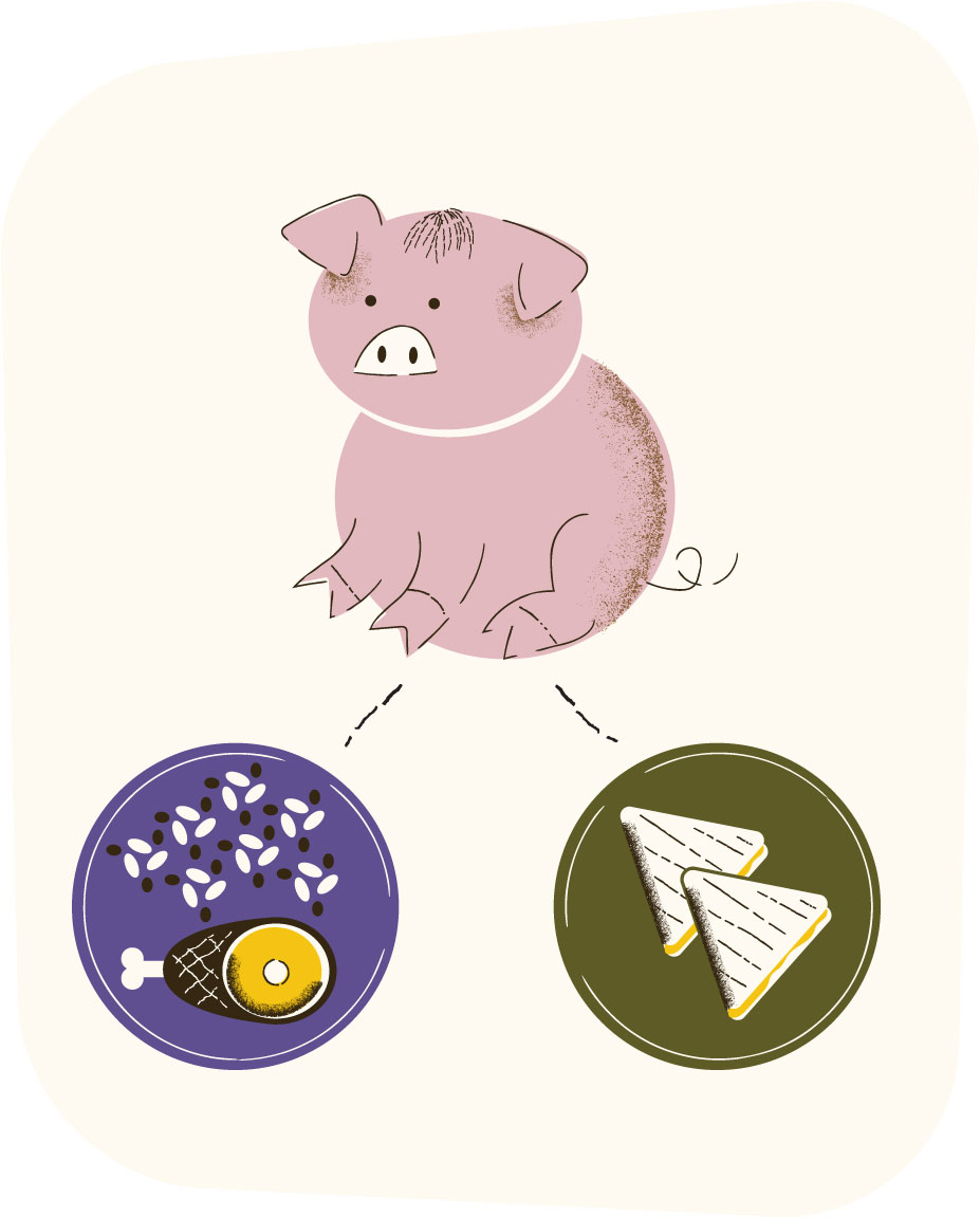 Illustration of pork used multiple ways.