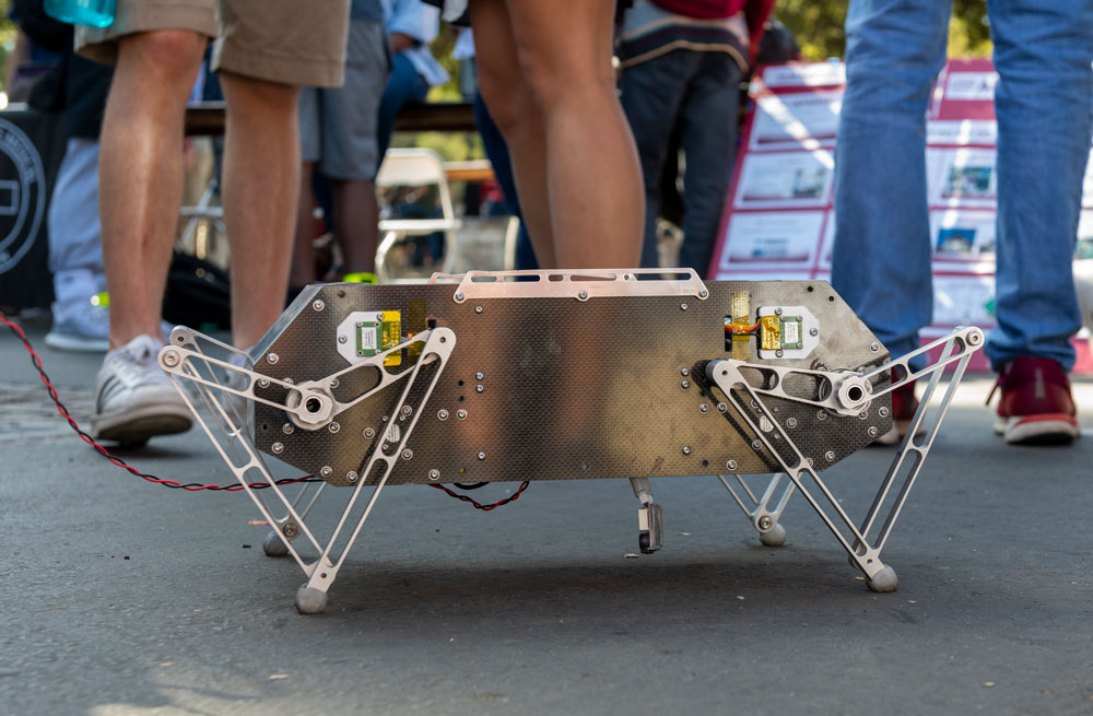 Photo of Doggo robot.