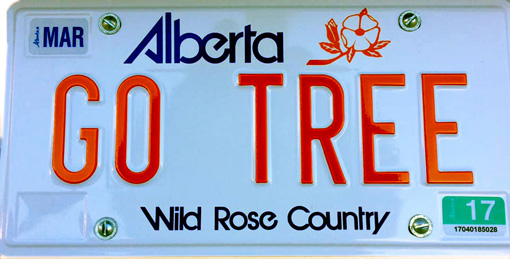 Silhouette of Alberta license plate with the phrase Go Tree
