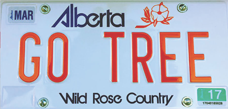 "Outline of car license plate that reads ""Go Tree""."