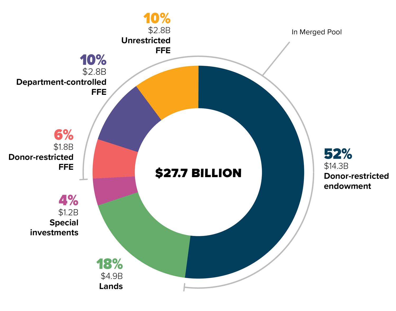 Endowment pie chart