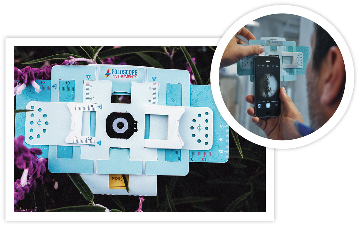 WHO'S  ZOOMIN' WHO:  Foldscope users upload photos of their finds to the Microcosmos online community daily.