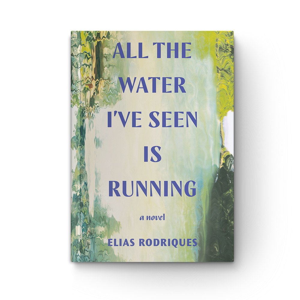 All the Water I've Seen Is Running book cover