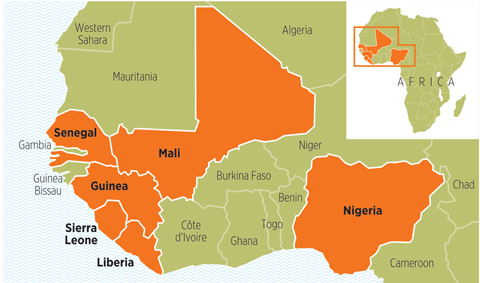 A map of West Africa showing the countries affected by Ebola. Nigeria, Liberia, Sierra Leone, Guinea, Mali, and Senegal are highlighted.